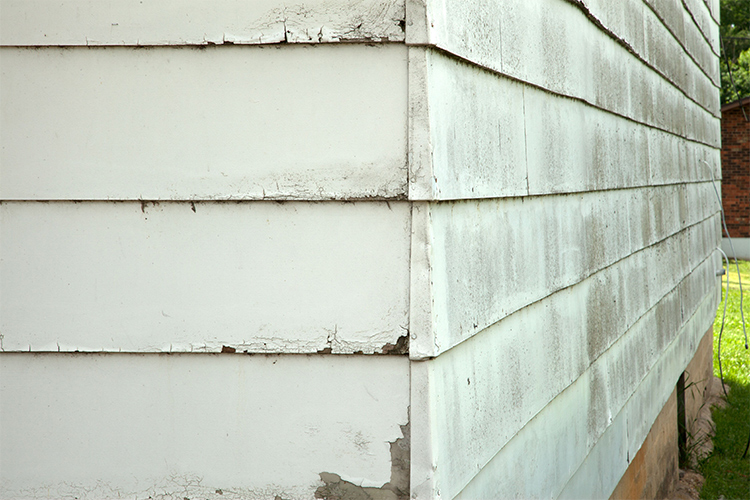 Common Masonite Siding Problems And How To Fix Them