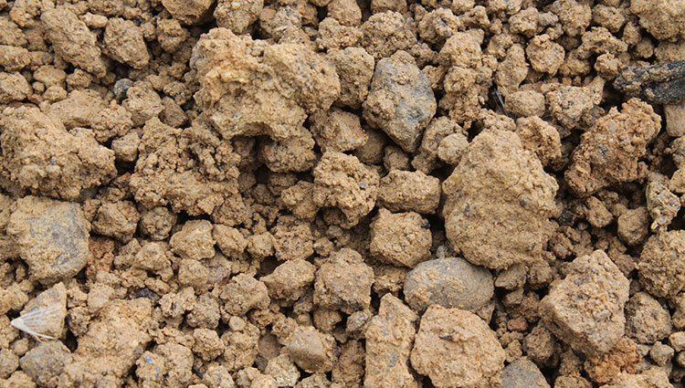 Shrink-Swell-Soil-Richmond-Protect-Foundation